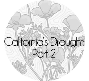 J_Sayuri_California_Drought_Comic_Water_Saving_2