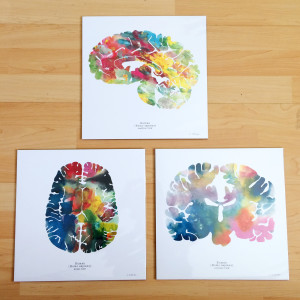 Human Brain Art Print Set of Three